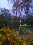 3 - Les jardins de BERCY.jpg